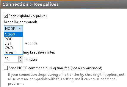 FTP Keep-alive picture 02
